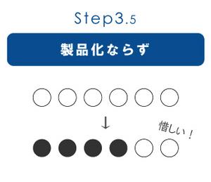 step3.5.jpg